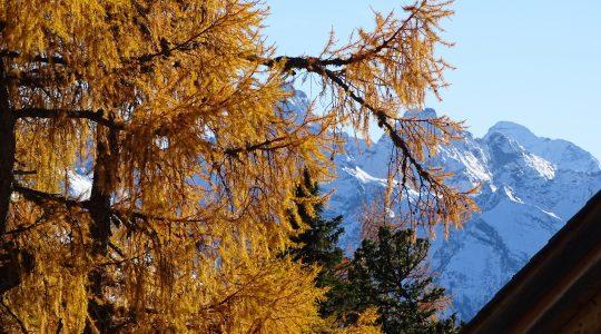 Een ode aan de herfst in Oostenrijk