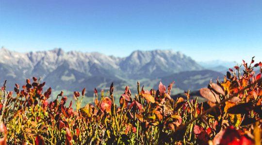 Zo mooi is het in Zell am See – Kaprun vandaag