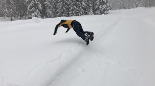 Live Sneeuwdump Update vanuit Ehrwald