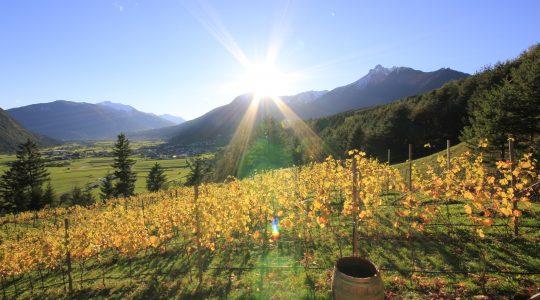De lente in Imst in Tirol is een feestje!