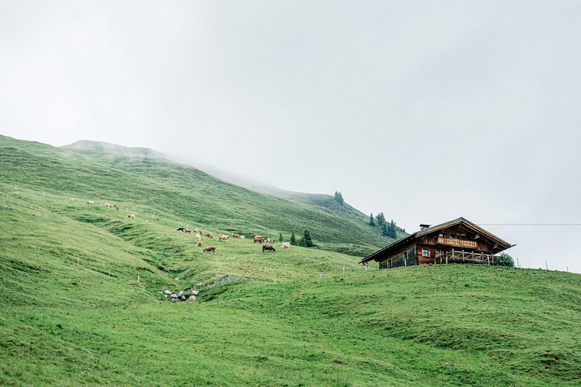 MountainbikeinSaalbach-0011