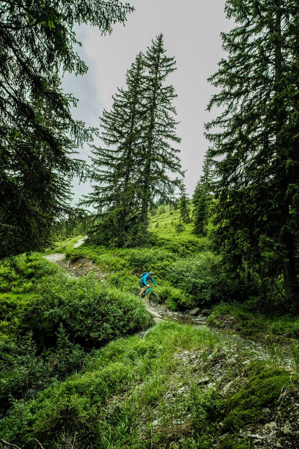 MountainbikeinSaalbach-0019
