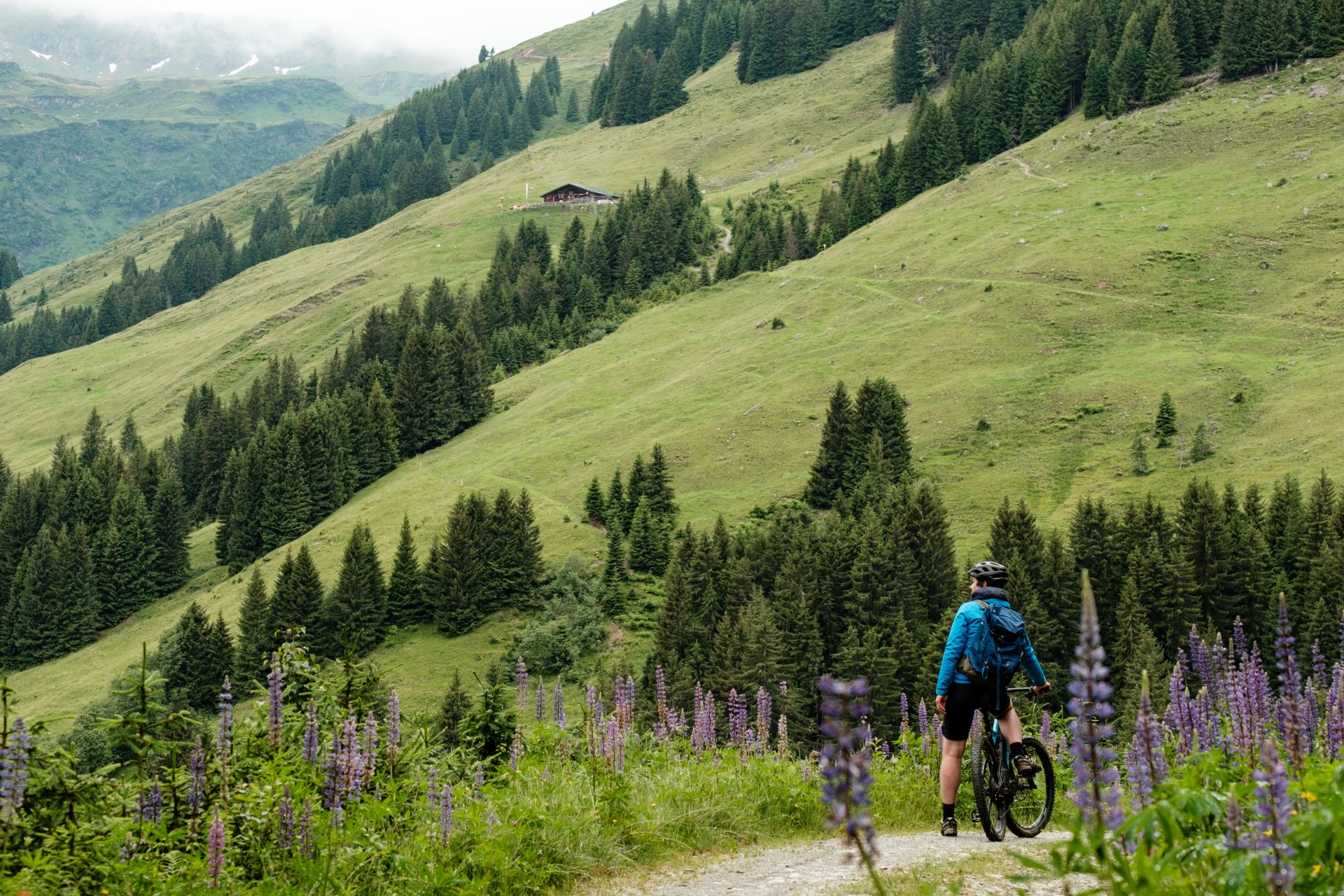MountainbikeinSaalbach-0023