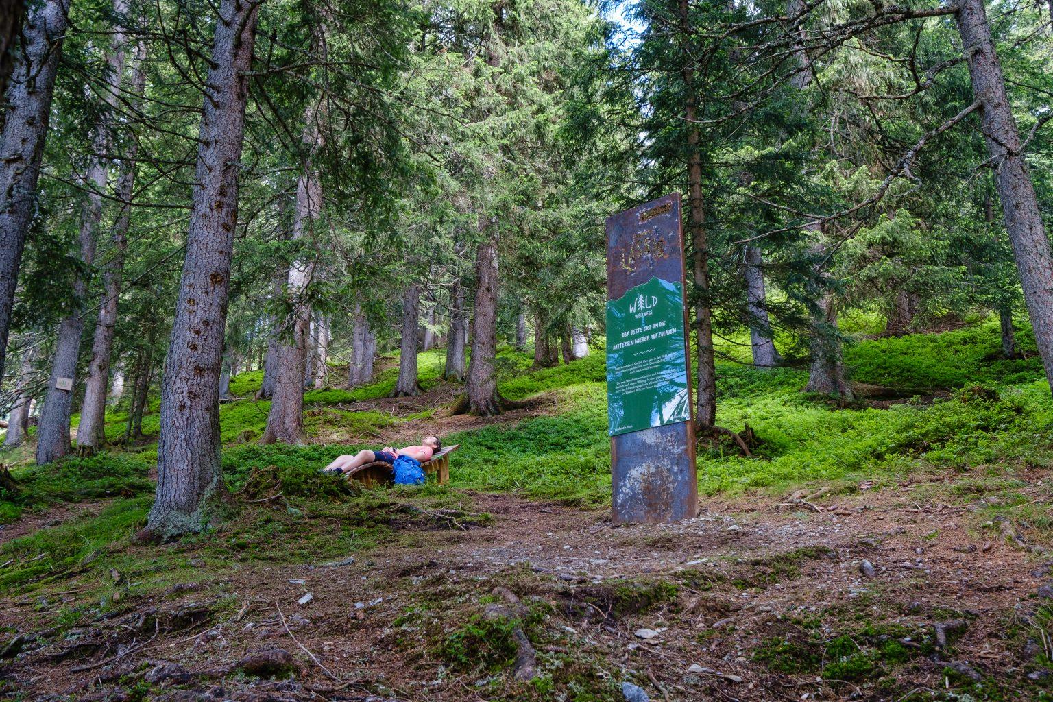 Wald Wellness Saalbach-1